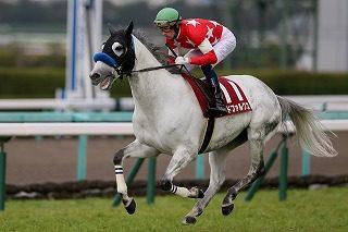 【東京サラブレッドクラブ】2021年度募集馬の全頭診断・短評(関西入厩)