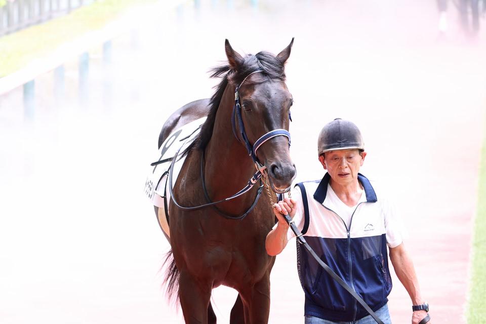 2020/08/08 愛馬の近況【一口馬主 ドゥラモンド】
