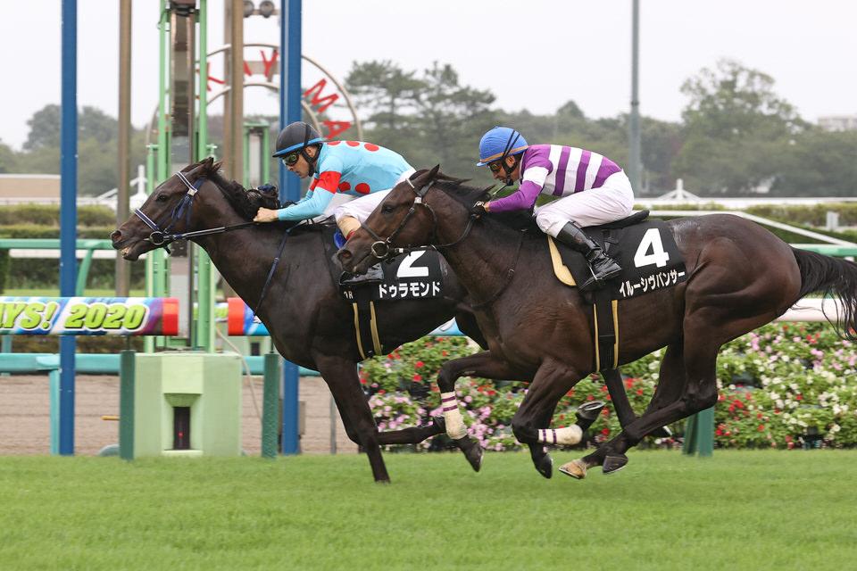 【ドゥラモンド】2020/12/18 本番前最後の更新【愛馬の近況】