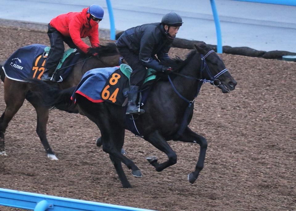 【ドゥラモンド】2021/03/25 次走の鞍上決定!【愛馬の近況】