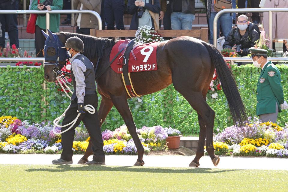【ドゥラモンド】2021/07/22 鞍上決定、今週の土曜日に出走予定【愛馬の近況】
