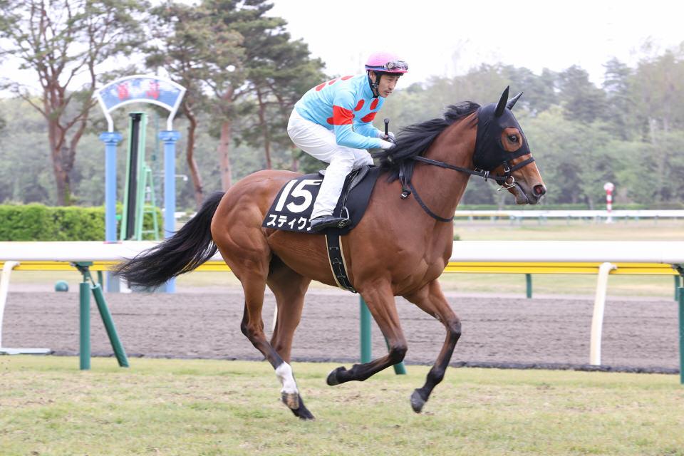 【スティクス】2021/06/18 馬場によってはノメって上手く走れない【愛馬の近況】