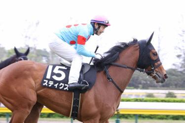 【スティクス】2021/05/31 良い状態を維持【愛馬の近況】