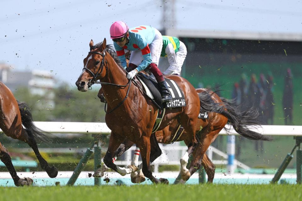 【セントオブゴールド】2021/05/20 19日に帰厩、6月の東京もしくは中京を目標【愛馬の近況】