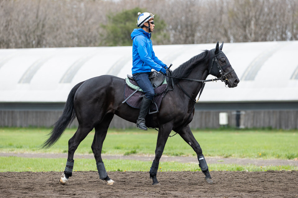 【リズムオブラヴ】2021/05/15 馬体にメリハリが出てくる【愛馬の近況】