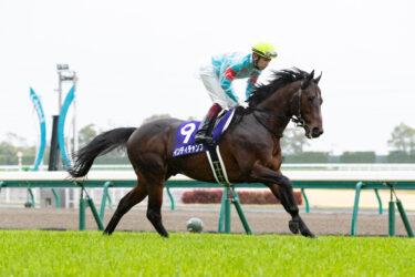 【シルクホースクラブ】2021年度募集馬の全頭診断・短評(関西入厩)