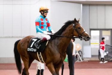 【セントオブゴールド】2021/07/22 第2回札幌開催を目標に【愛馬の近況】