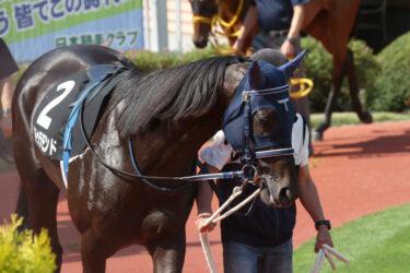 【ドゥラモンド】2021/07/27 土曜日のレースは惜しくもクビ差の3着【愛馬の近況】