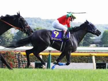 【ラフィアンターフマンクラブ】2021年度募集馬の全頭診断・短評(関東入厩)
