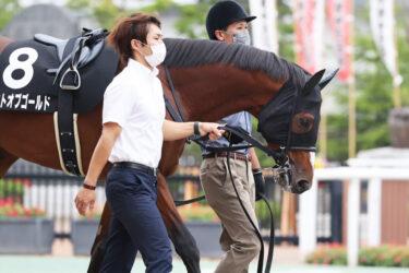 【セントオブゴールド】2021/08/21 近日中に乗り運動を開始【愛馬の近況】