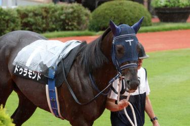 【ドゥラモンド】2021/09/11 疲れなく終いハロン13秒まで伸ばす【愛馬の近況】