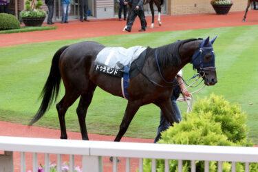 【ドゥラモンド】2021/09/18 11月開催の競馬を目指す予定【愛馬の近況】