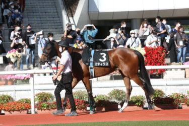 【スティクス】2021/10/14 予定通り放牧へ【愛馬の近況】